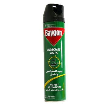 Baygon Roaches Ants 400ml