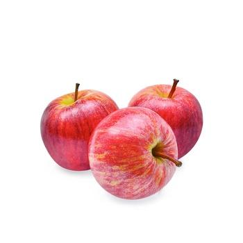 Apple Royal Gala USA(6 PCS)