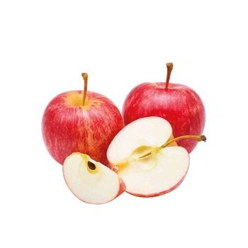 Apple Royal Gala New Zealand