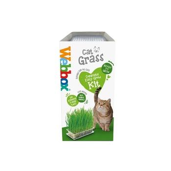 Webbox Cat Treat Cat Grass 120g