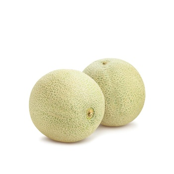 Cantaloupe Melon USA