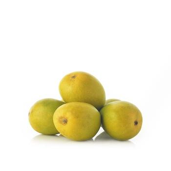Mango South Africa