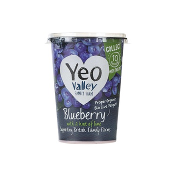 Yeo Valley Organic Yoghurt Blueberry With Hint Of Lime 450g