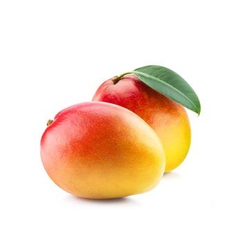 Mango Yemen