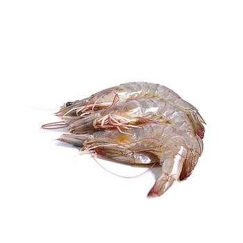 Arctic Gold Shrimps - Extra Large 454g