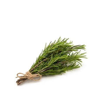 Rosemary Fresh