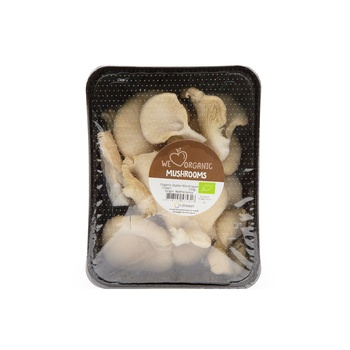 Mushroom Oyster Organic