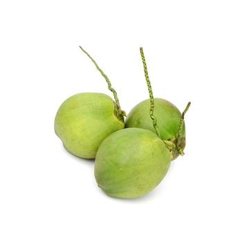 Tender Coconut Sri Lanka