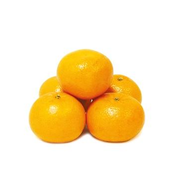 Mandarine South Africa