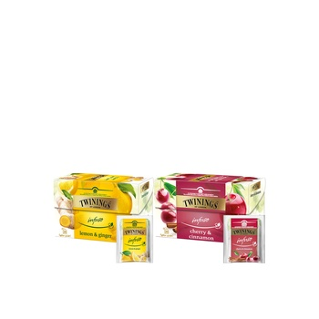 Twinings Infusion Assorted 2X20's