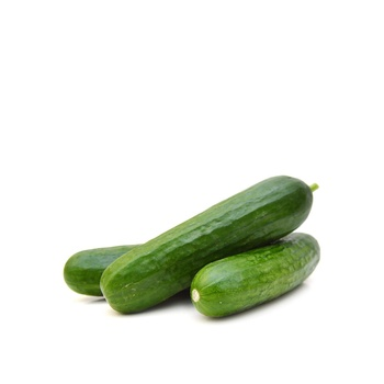 Cucumber Holland