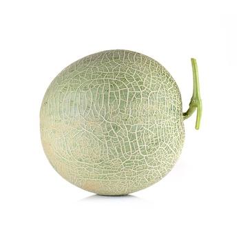 Rock Melon Australia