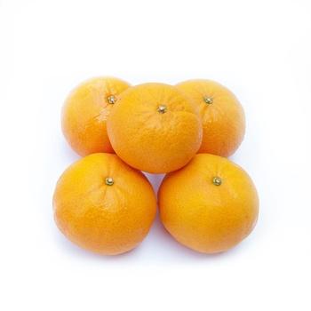 Mandarine pakistan