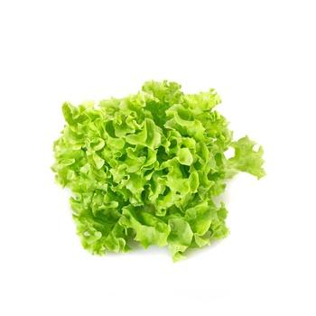 Lettuce Frisse Green