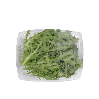 Live Lettuce Frisee Green