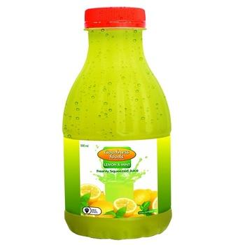 Goodness Foods Lemon & Mint Juice 500 ml