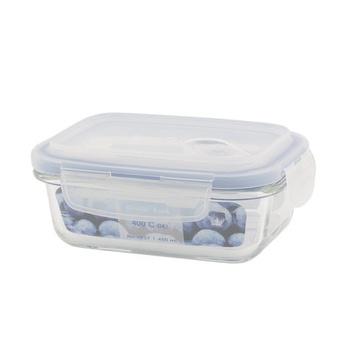 Borosilicate Glass Container 450ml