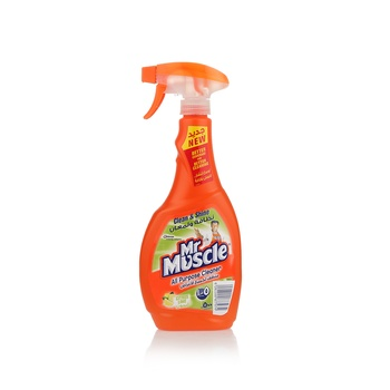Mr. Muscle 5 In 1 All Purpose Cleaner 500ml