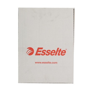 Esselte A4 Standard Pocket 100pcs Pack
