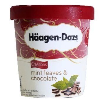 Haagen Dazs Mint Leaves & Chocolate Ice Cream 500ml