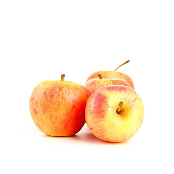 Apple Cameo Usa