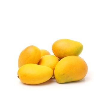 Mango Alphonsa India