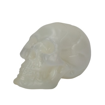 Chamdol Halloween Plastic Skull