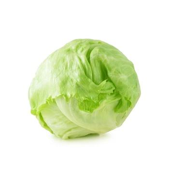 Lettuce Iceberg Holland/Spain