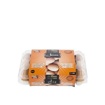 Jenan Brown Eggs Flip Top 15S Large