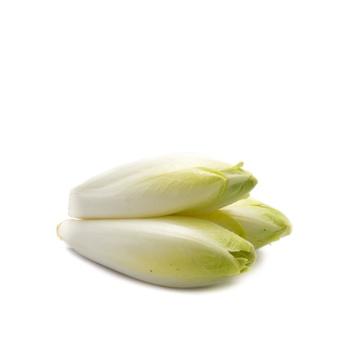 Chicory Holland 500g