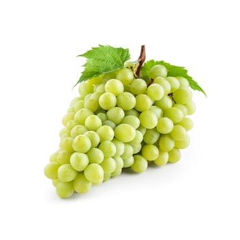 Grapes White Seedless Egypt PP 500g