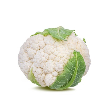 Cauliflower Holland