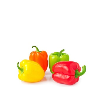 Capsicum Mix Holland