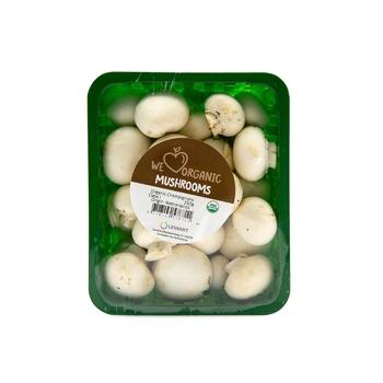 Mushroom White Organic