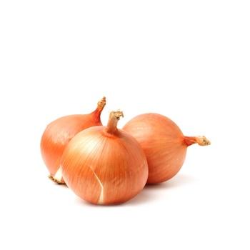 Onion Brown (3PCS)