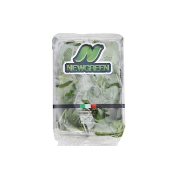 Baby Spinach Italy