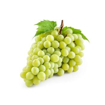 Grapes White Seedless Egypt