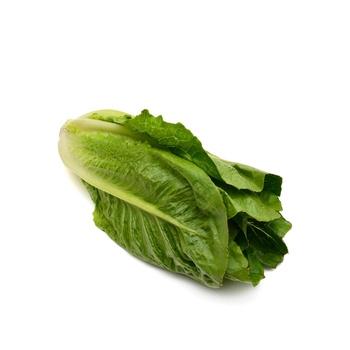 Lettuce Local
