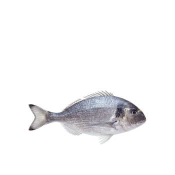 Sea Bream per kg