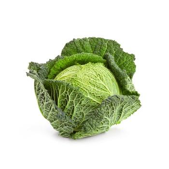 Cabbage Savoy Holland