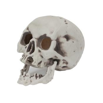 Chamdol Skull Change Led Light